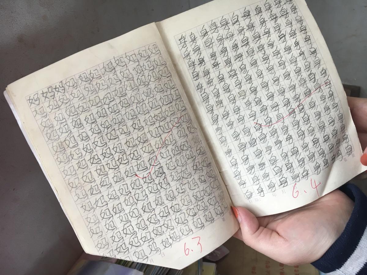 Learning the ZhongGuolingo