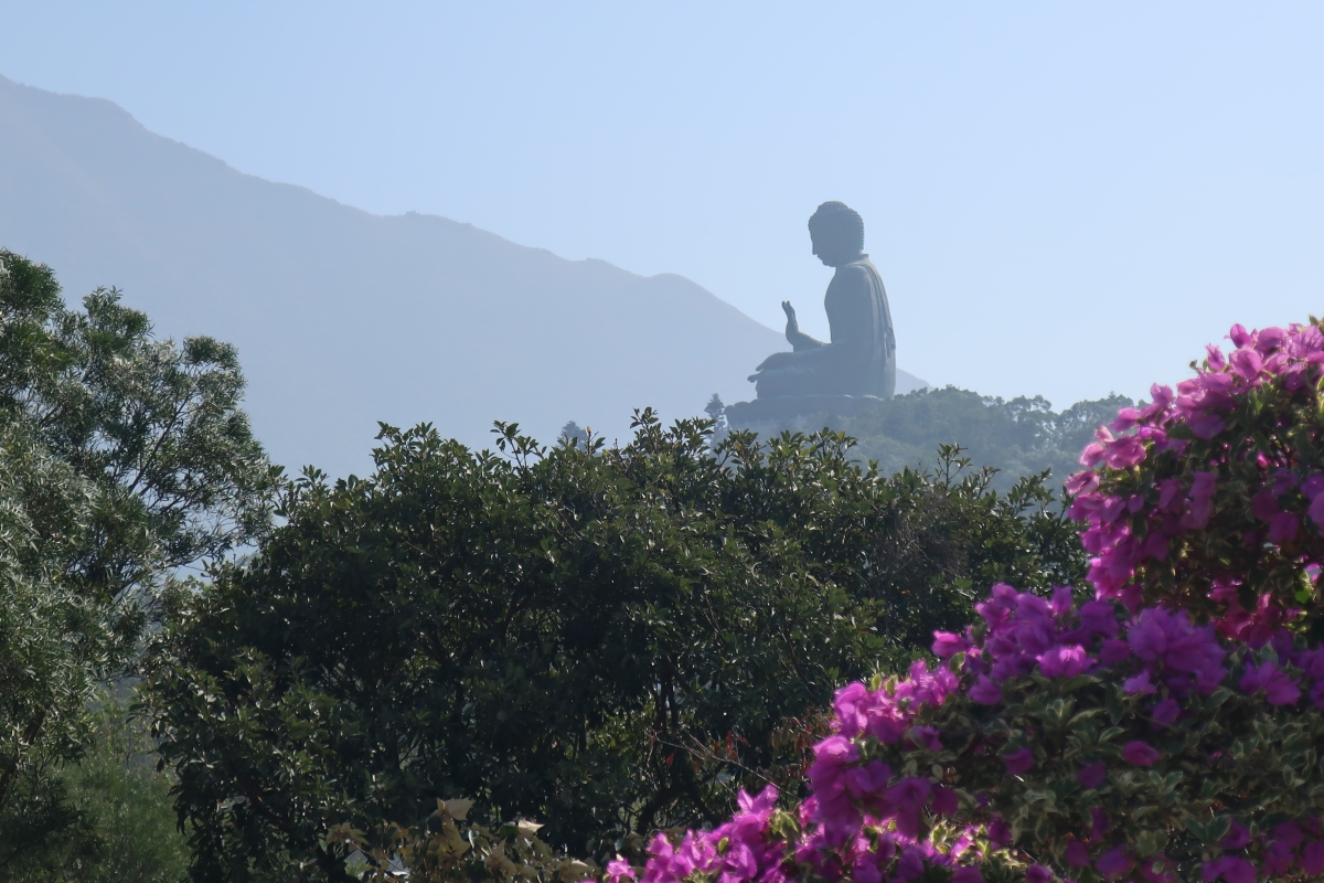 Hong Kong: Big Buddah & Tai OVillage