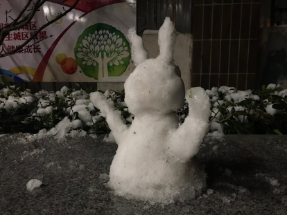 Snow-bunny (I think) near my apartment